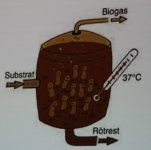Biogasen minskar utsläppen nästan dubbelt